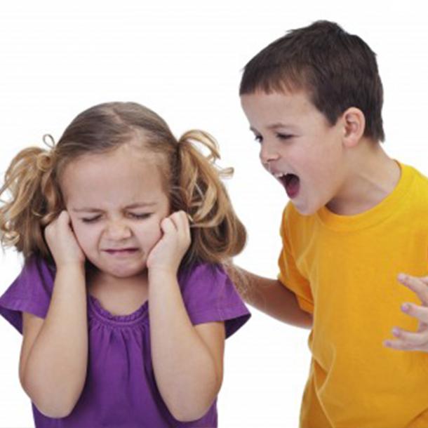 اضطراب خواهر یا برادر